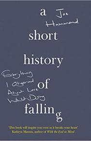 A Short History of Falling by Joe Hammond
